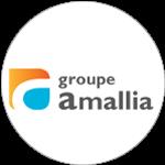 ref_amallia
